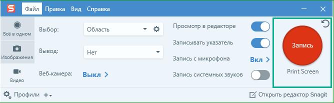 Zapis_skrinshota